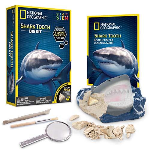 National Geographic - Kit di Scavo Dente di Squalo